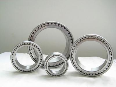 Full roller bearings (Single Row Full Complement Cylindrical Roller Bearings)
