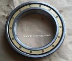 SKF Bearing 6030M